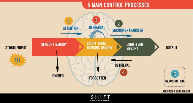 5processess